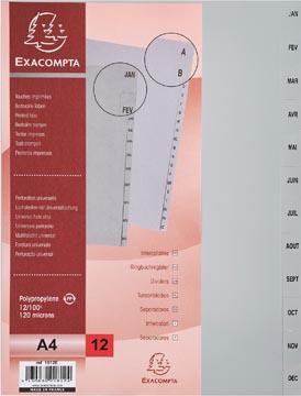 Exacompta tabbladen maandelijks voor ft A4, uit PP, 12 tabs, januari-december, grijs